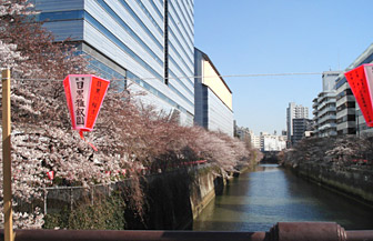 megurogawa2011.jpg